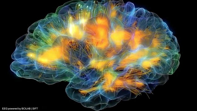 Neurons firing off in real-time.  From 'The dynamic mind: Stunning 3D 'glass brain' (Daily Mail)