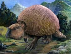 A glyptodont, lumbering.